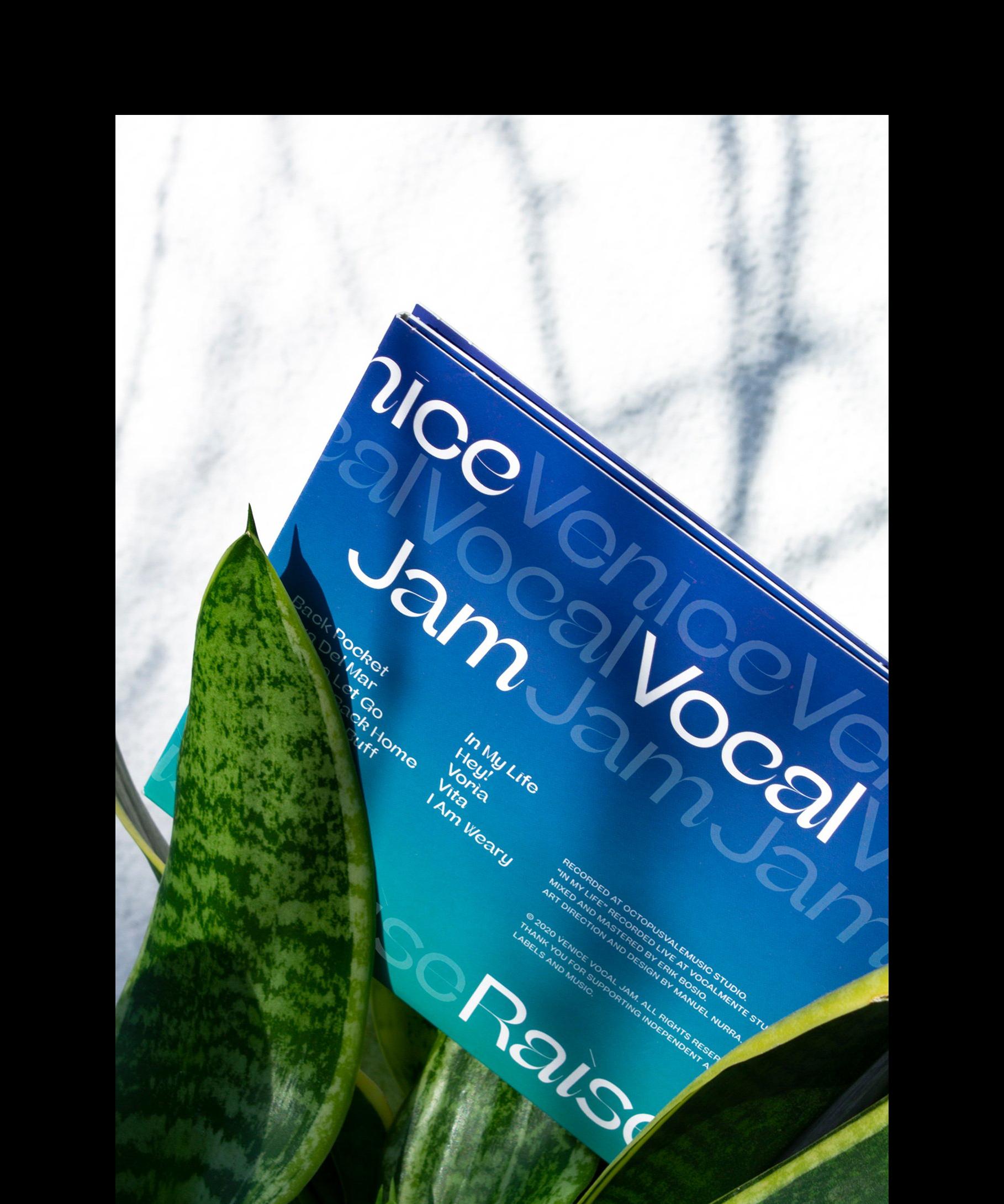 Beatrice Display Venice Vocal Jam 2