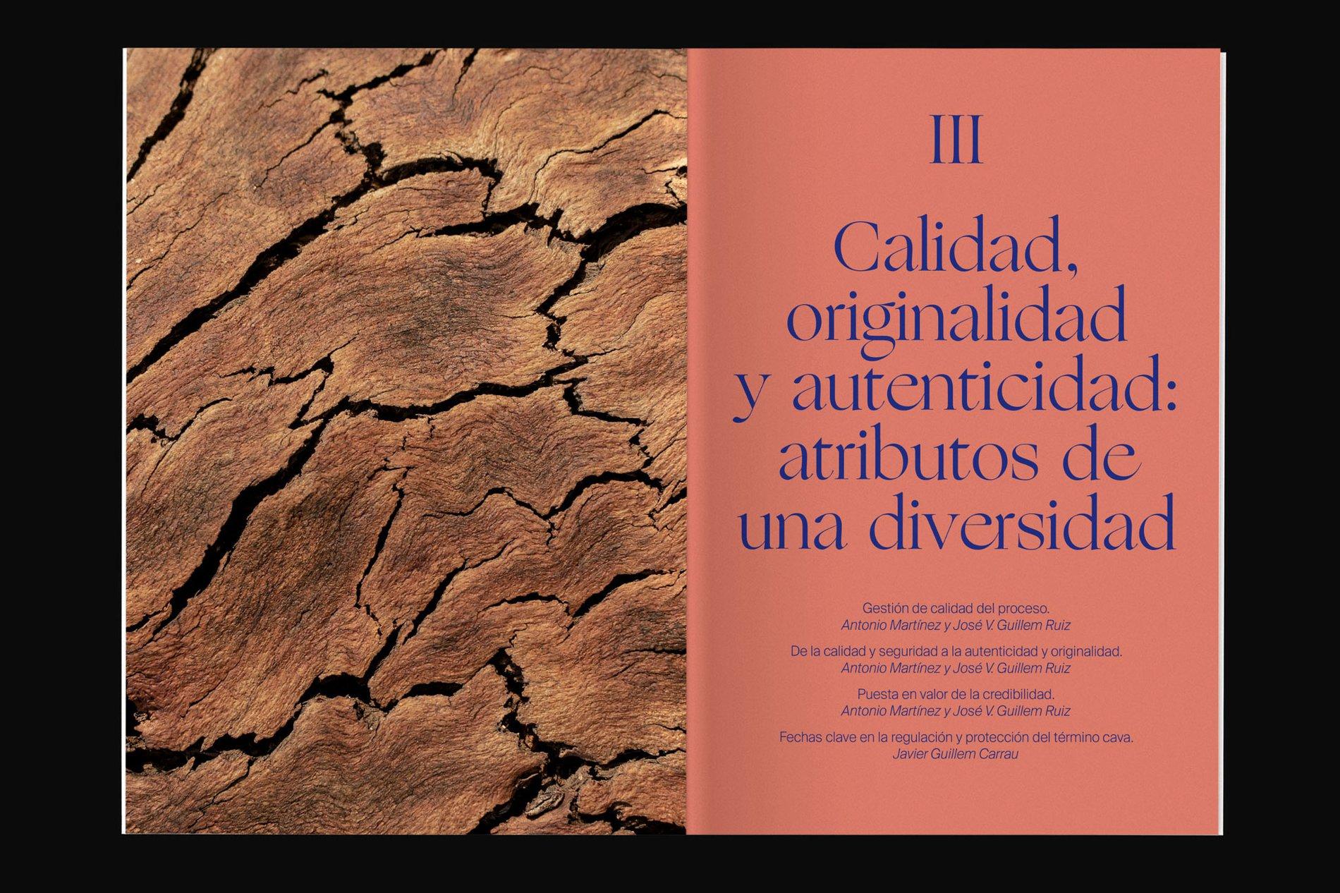 Cava-Ogg-3.1.jpg
