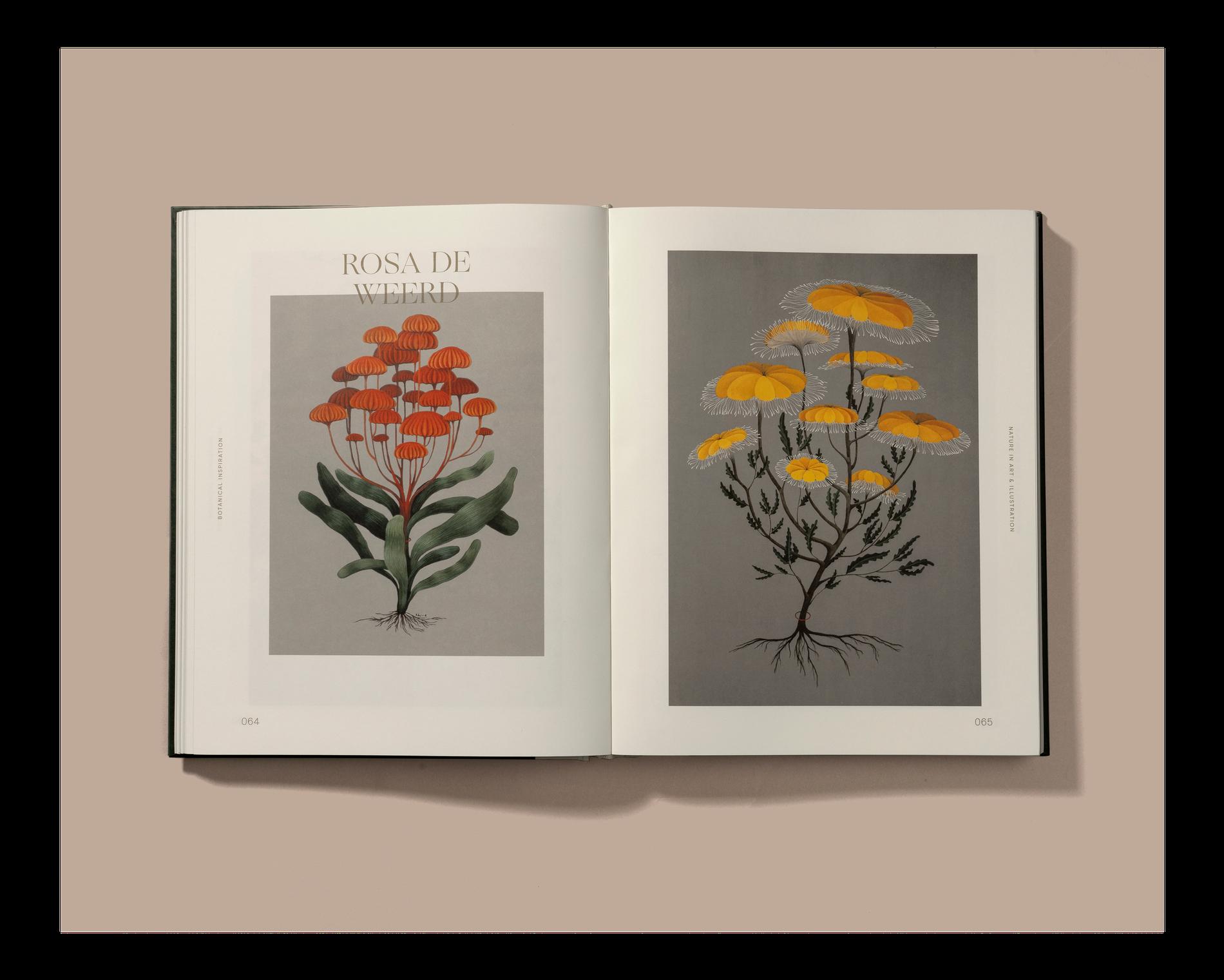Ogg-BotanicalInspiration-5.png
