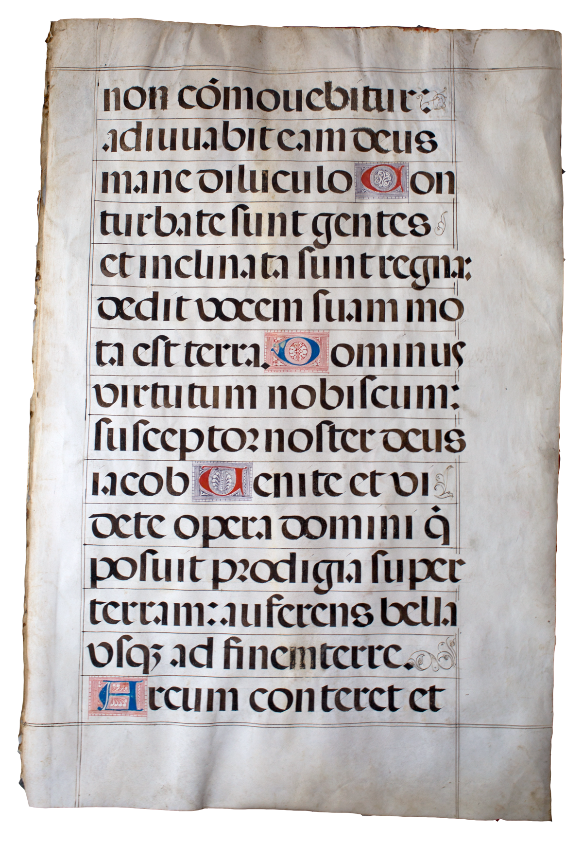 Respira Illuminated Manuscript Crop